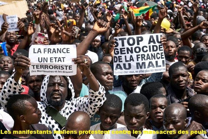 La police a dispersé la foule qui scandait des slogans hostiles à la présence de l'armée française et exigeait le départ du président Ibrahim Boubacar Keïta. (Violations des Droits de l'Homme en Afrique et dans le monde)